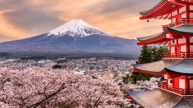 20 Countries Where You Can See the Japanese Cherry Blossoms