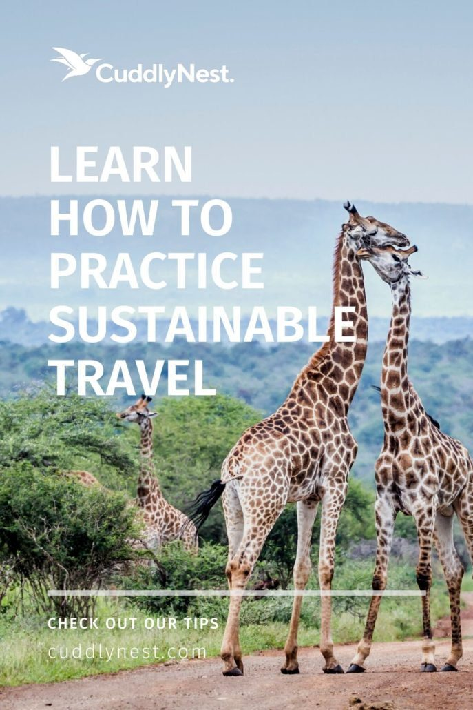 practice sustainable travel ecotourism pin