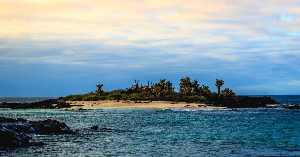 The Galápagos Island surrounded by the ocean.