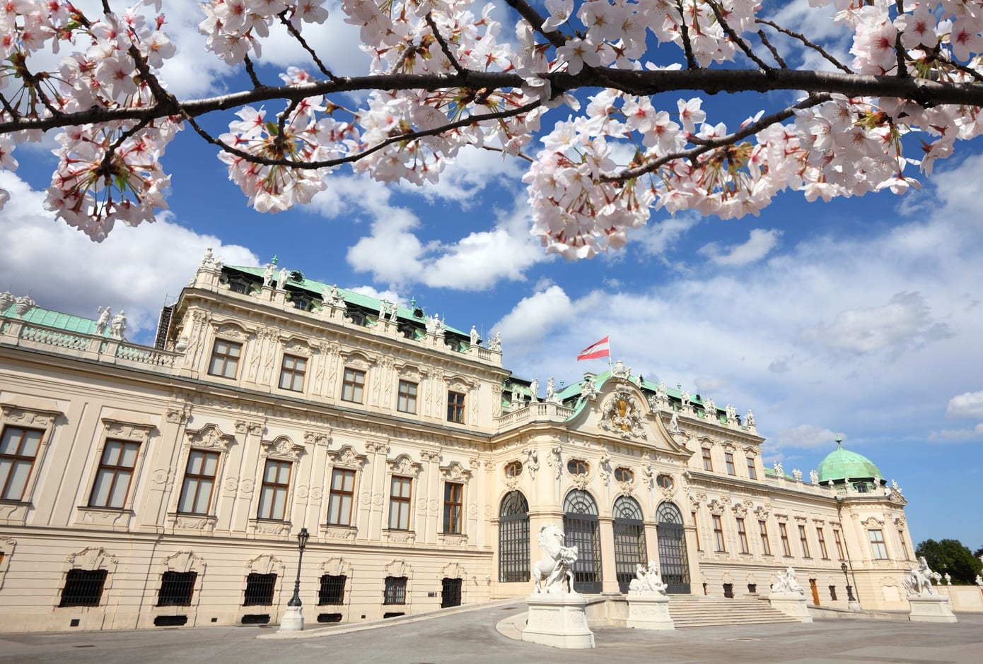 Cherry blossom tree and the Belvedere Palace in Vienna, Austria.