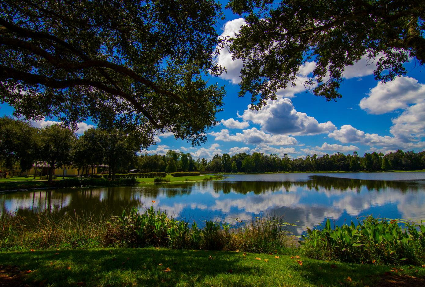Lake in Orlando, Florida.