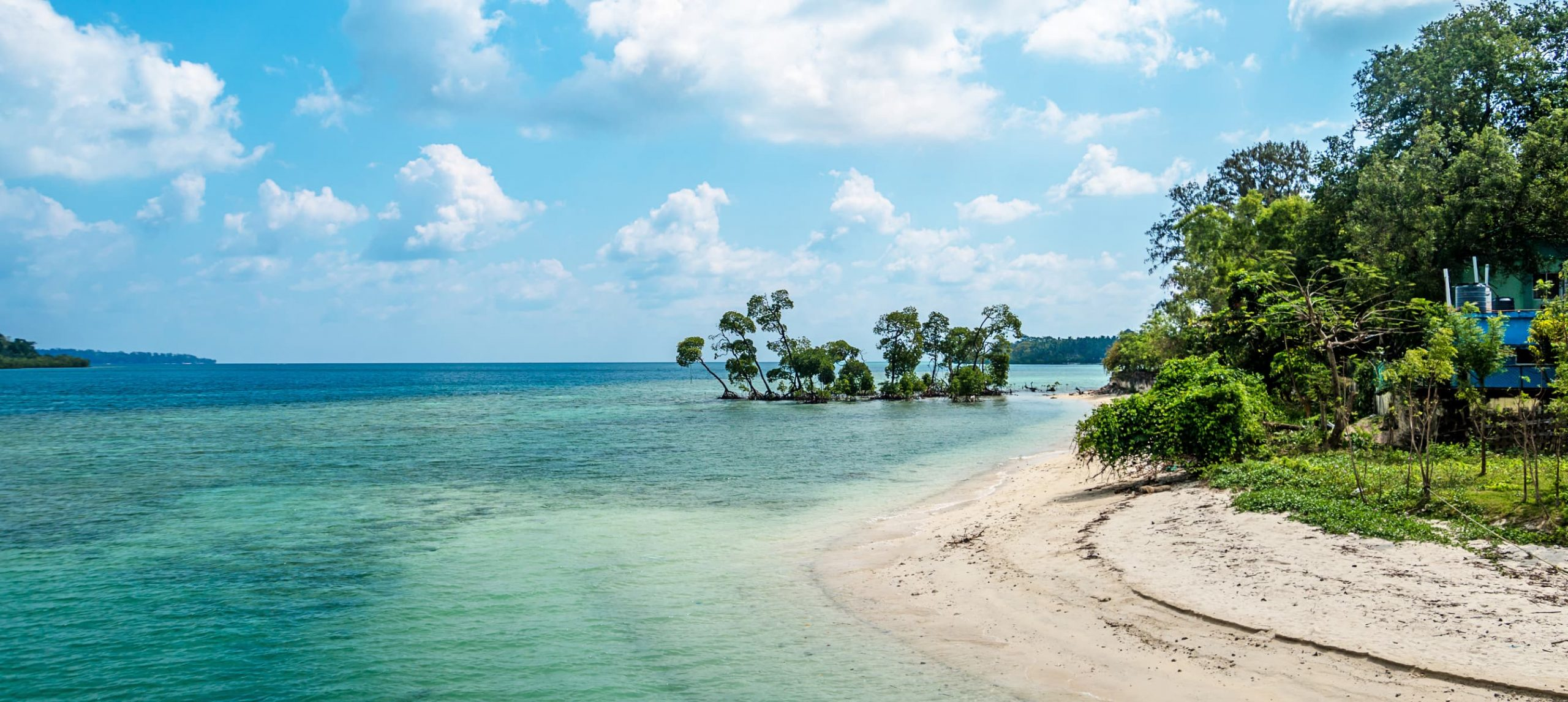 The 11 Best Beaches In India For An Amazing Vacation
