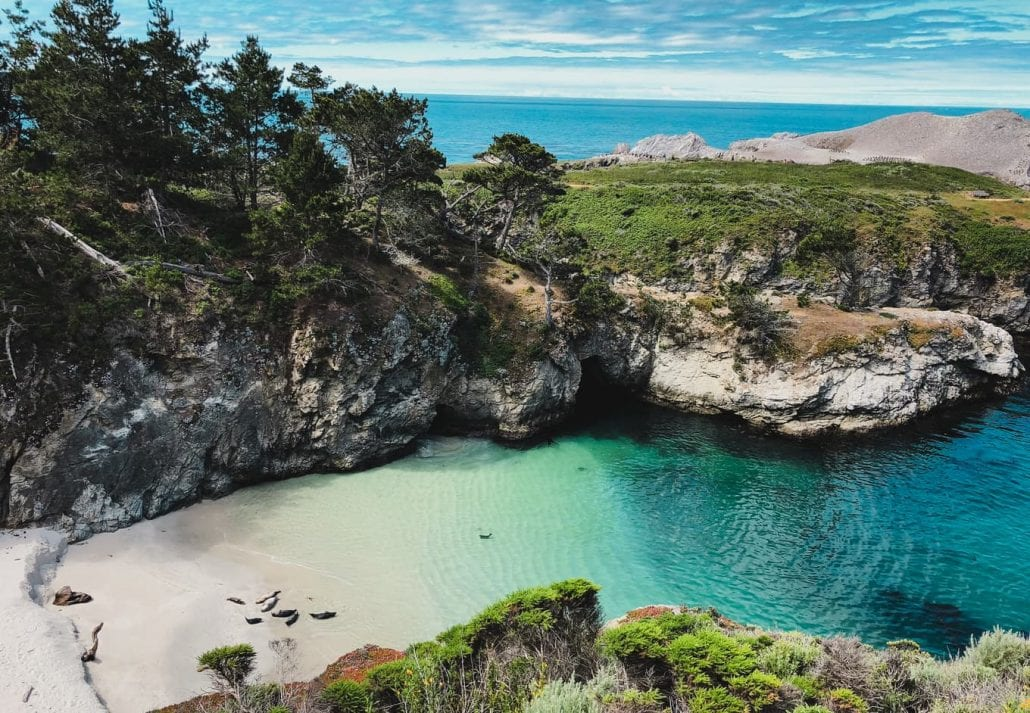 The transparent blue-green waters of the ocean surrounded by forests at the Point Lobos National Park, in California.