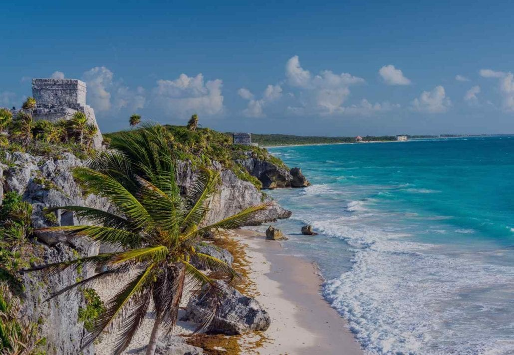 Swinging palm tree by the ocean on a beach in Tulum, Mexico.