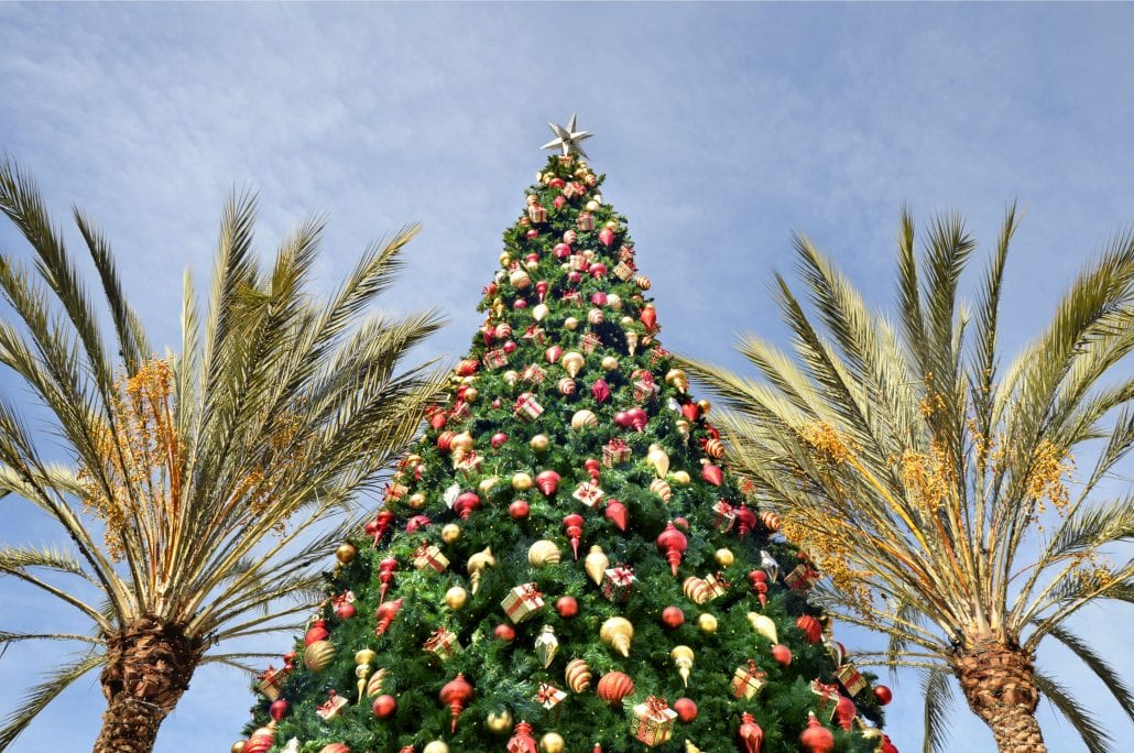 A Christmas tree surrounded by two palm trees