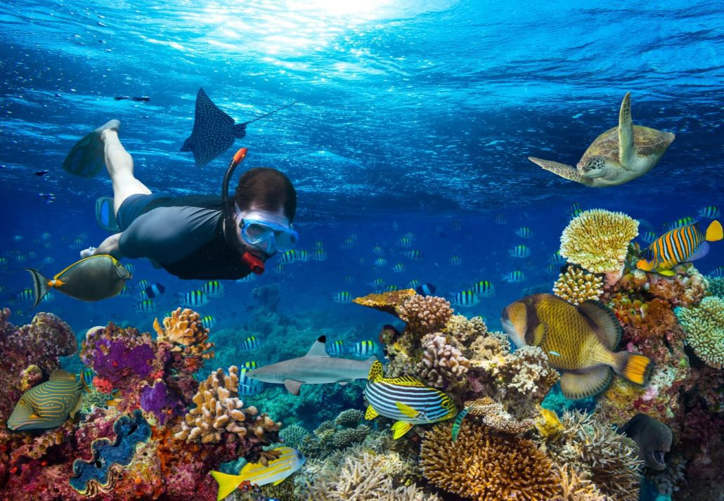 Young man marveling at colorful fishes while snorkeling.